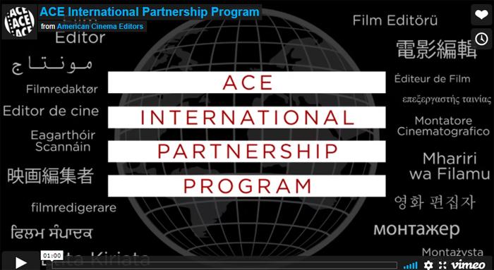 ACE International Partnership Program